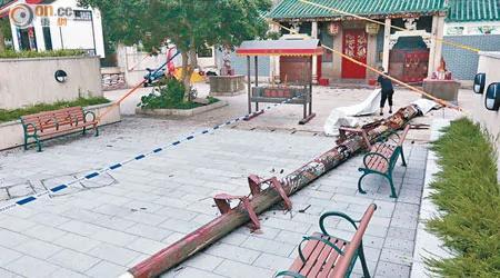 被稱為定海神針的鴨脷洲洪聖古廟龍柱倒下,令人擔心香港危危乎。(夏國威攝)