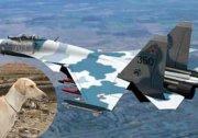 軍事專家爆料 中共殺18萬隻狗換蘇-27戰機(圖)