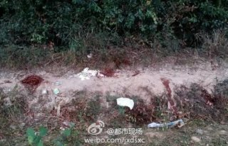 红领巾不是护身符:江西3名小学生放学路上遭砍杀 全部身亡 组图
