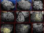 史前文明:巨人的传说和存在证据(组图)