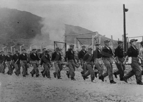 """朝鲜战争大部分""""志愿军""""战俘选择去台湾"""