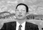 山東副廳官員落馬 張高麗新醜聞曝光(圖)