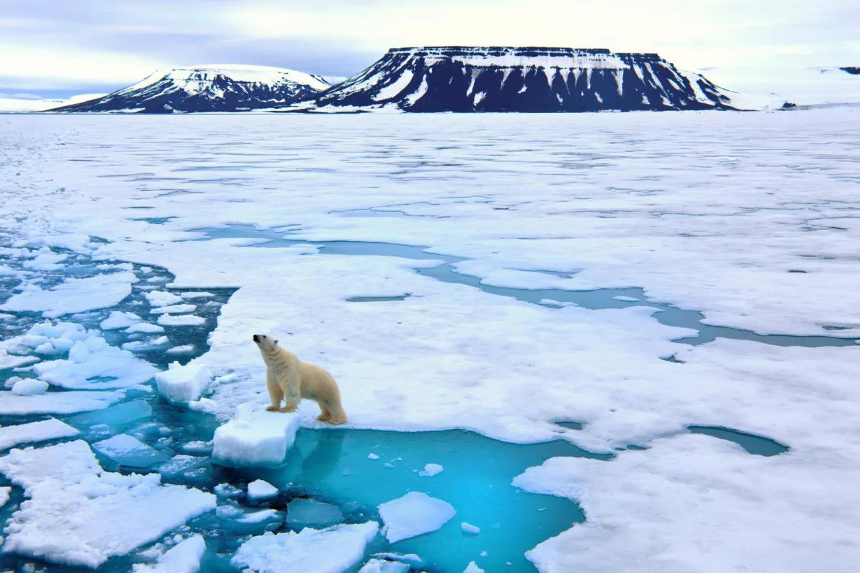 北極海冰層面積歷史新低:全球變暖惡化