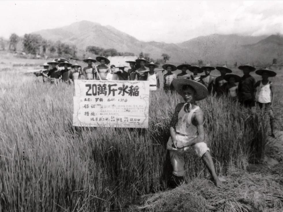 中组部大字报:大跃进饿死三千五百万人