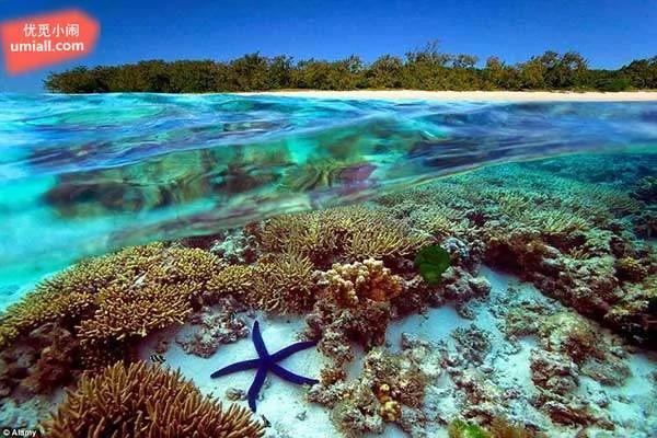 地球上最美的10座岛屿,10座都去过那人生就地球上最美的10座岛屿,10座都去过那人生就无憾了!--优觅小闹