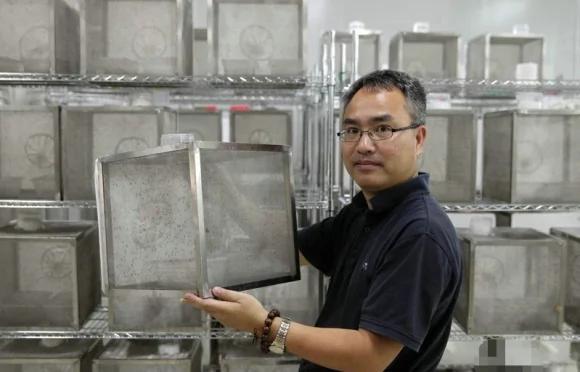 這家蚊子工廠每周製造出100多萬隻蚊子 要滅絕全世界討厭的蚊子!