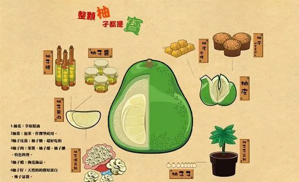 柚子皮不僅可以加工成柚皮糖、清潔劑,柚子果肉還可以釀柚子醋,連種子都可以泡水溶出果膠做成保濕面膜,可以說整顆柚子都是寶!(照片/北原數位機會中心提供)