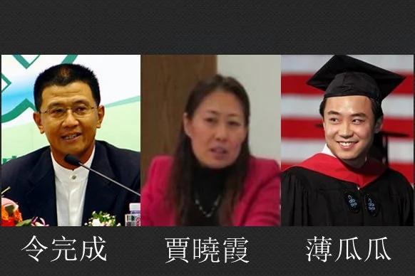 姜维平:不止令完成 薄瓜瓜贾晓霞都有政治核弹 图