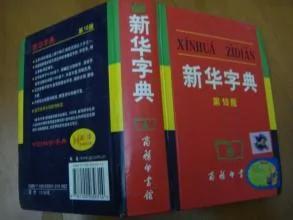 一个外国小孩评价《新华字典》,令国人脸红 图