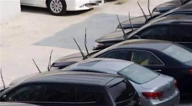夏天停车 一定要把雨刷立起来 组图