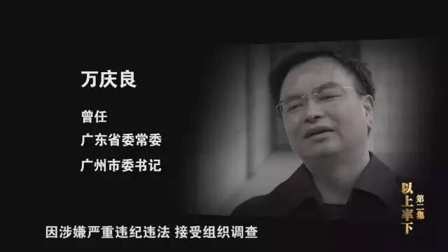 李方正:大老虎演技排行榜——《永远在路上》学习体会 组图
