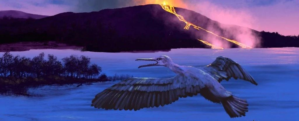 一只九千万年前的鸟告诉我们北极以前没有冰 全球暖化已发生过!