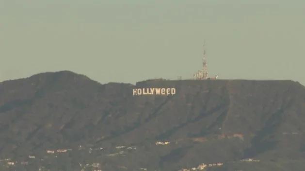 """庆祝大麻合法化?加州的好莱坞已经成了""""好来草"""""""