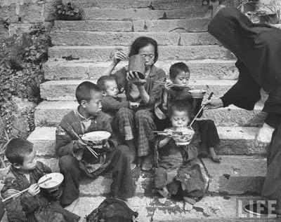 一群死里逃生的上海人 人变成动物 女人变成妓女