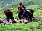 揭秘西藏奇特的天葬仪式(组图)