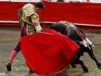 哥伦比亚公牛博览会斗牛士被牛角挑飞(组图)