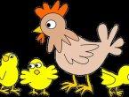 十个鸡年成语大比猜 你能猜到第几个?(图集)