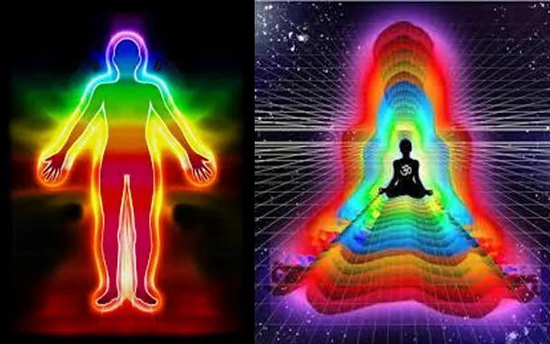 外媒:所有生命能以特殊方式感应地球磁场 宇宙万物也是!