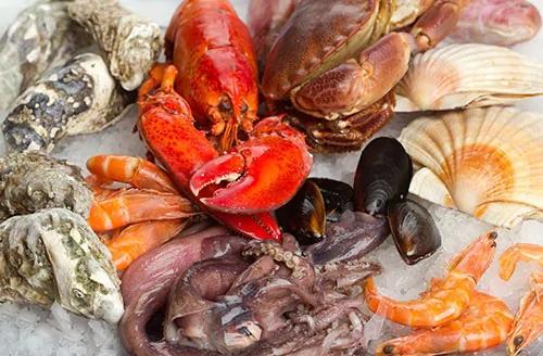 外媒:海洋暖化造成海鲜的致命神经毒素大增!