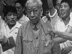 被中共迫害的国家正副主席(上)(图)