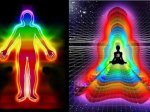 外媒:所有生命能以特殊方式感应地球磁场 宇宙万物也是!(组图)