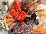 外媒:海洋暖化造成海鲜的致命神经毒素大增!(组图)