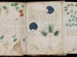 最神秘的中世纪手稿被破解?(图)
