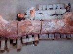 阿根廷牧羊人发现一根超级大骨头(组图)