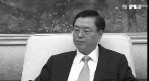 张德江谈辽宁贿选案与习近平不同调 港媒:汪洋将取代张出任港澳小组组长