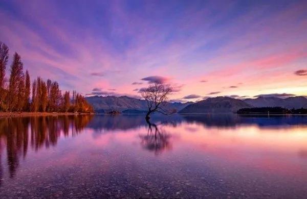 摄影师带你了解新西兰到底有多美