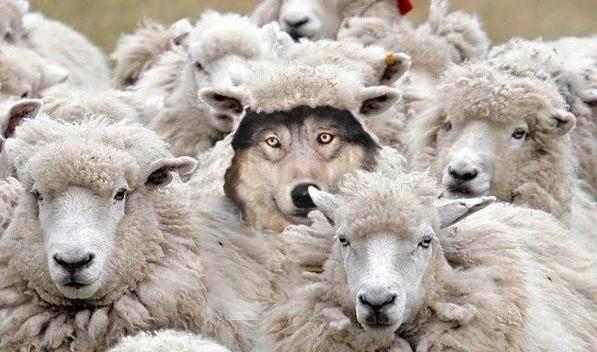 【微博精粹】共产党有一样使世人另目相看的能耐