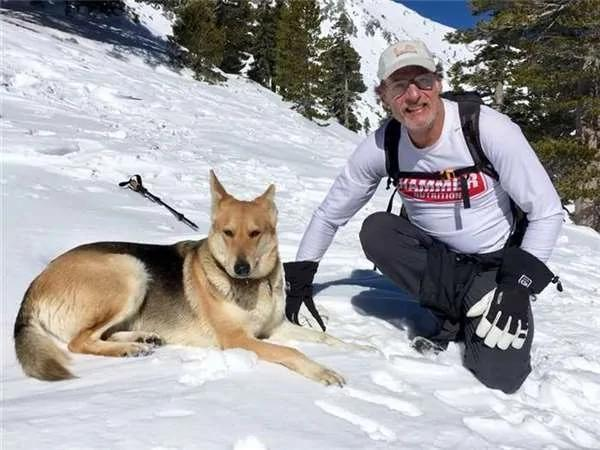 老先生带狗登山不料途中遇险 最后获救的他请求救难人员帮找失踪的狗…