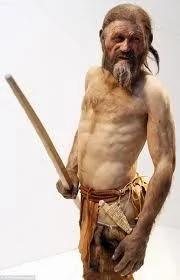 5300年前的冰人奥茨有19个活亲戚