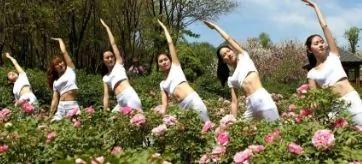 河南美女牡丹花丛间练瑜伽 展现姣好身姿(图集)