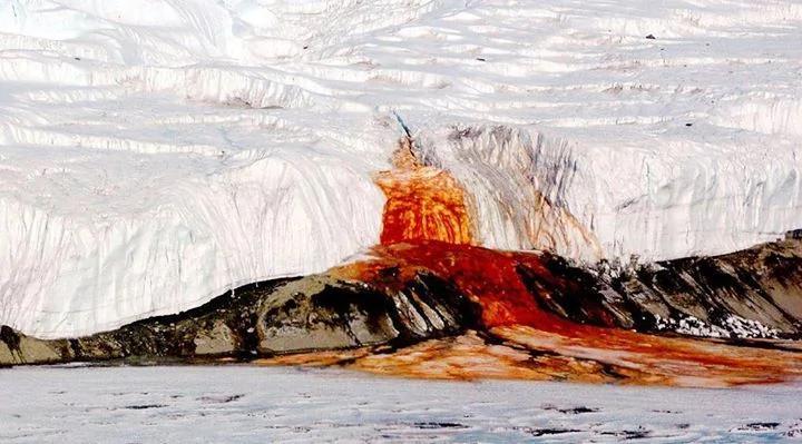 """南极""""血瀑布""""谜团一个世纪后终于被解开"""