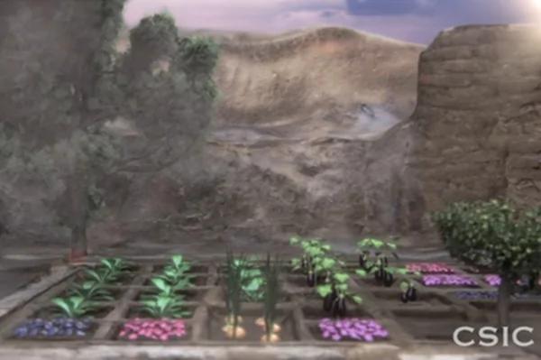 """埃及考古发现4000年前花园 竟是""""陪葬品"""""""