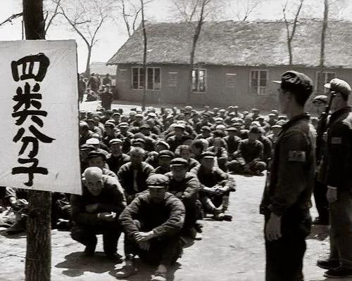 毛泽东刘少奇交恶内幕 揭秘王光美四清运动中角色