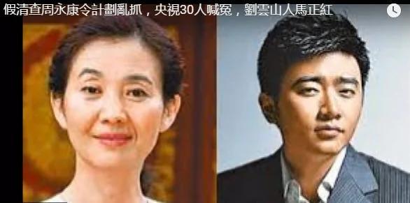 刘云山变身中纪委抓央视30多人?芮成钢从死刑到放出国竟是这样