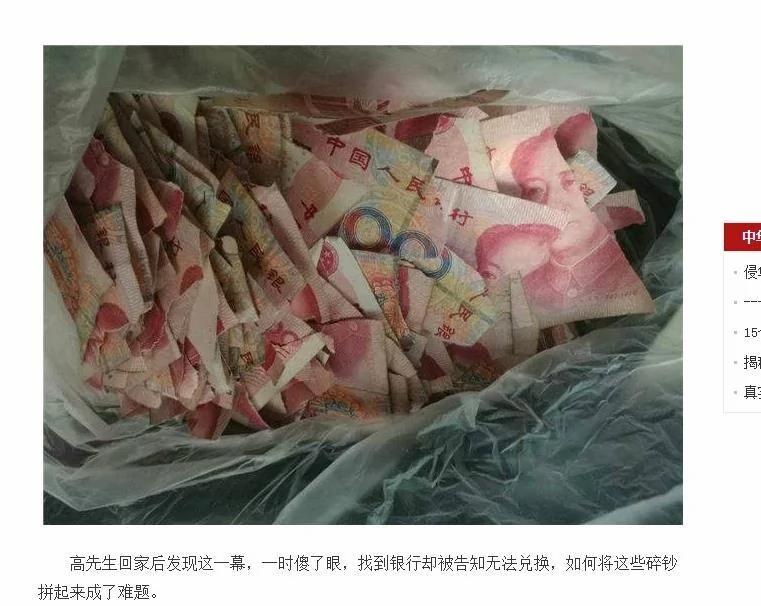 5万元人民币就这样被撕成了碎片 家长欲哭无泪