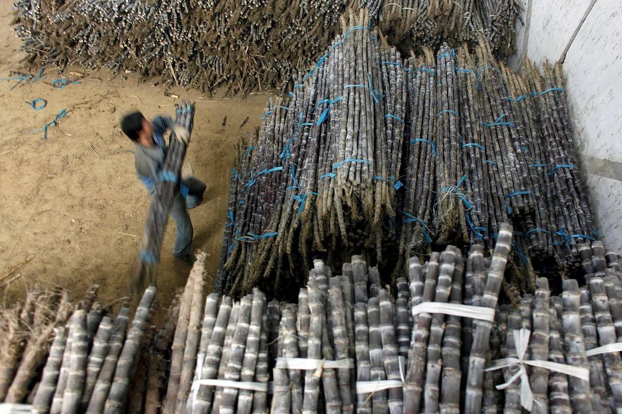 中国上调配额外食糖进口关税或令该大宗商品进一步承压