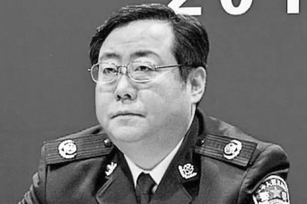 步王立军后尘 重庆市公安局局长何挺被免