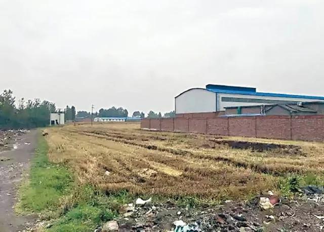 港媒:河南镉小麦占全国1/4馒头 哪需境外势力出手