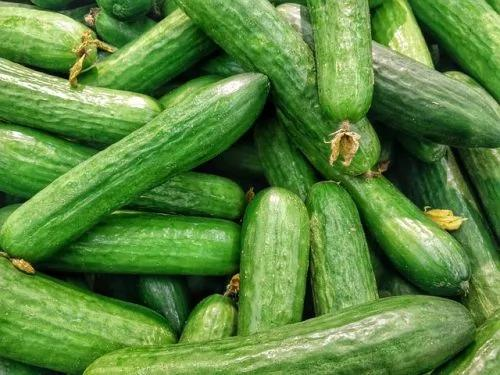 黄瓜是排毒高手!常吃还有助于预防肾结石