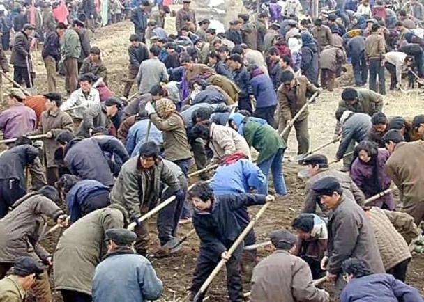 北韩输出劳工至俄罗斯 工人过奴隶式生活