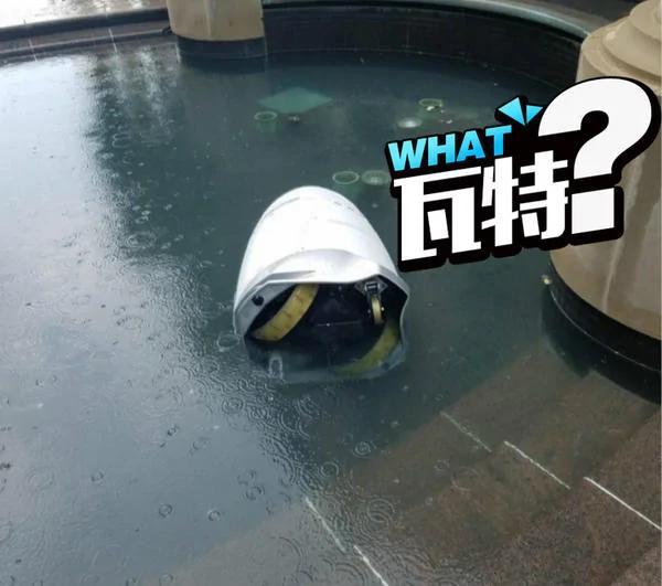 感情出问题?美国一机器人跳水自杀