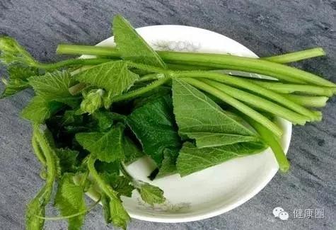这种菜叶子能治胃痛、去结石、助戒烟