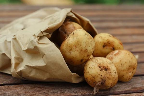 十全十美的营养美食:土豆!能降压还能减肥!