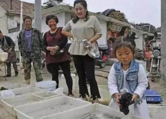 """4岁女孩集市卖""""毛"""" 100元一斤遭疯抢"""