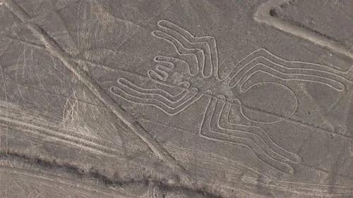 纳斯卡线条或与外星人有关?