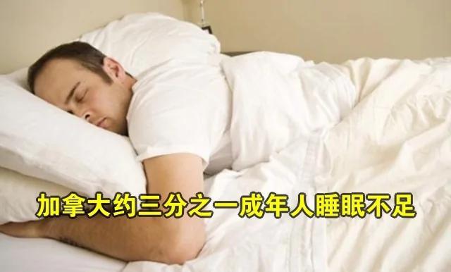 加拿大人陷入睡眠危机 后果太可怕了